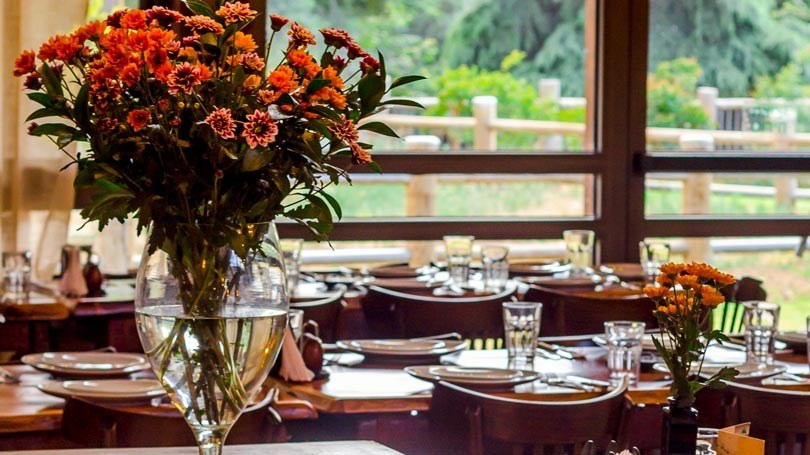 פרחים במסעדה
